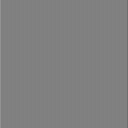 白黒の縞模様